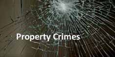 Utah Theft and Property Crimes Defense Lawyer